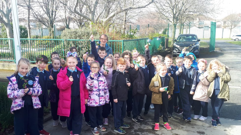 Blog Posts From 2nd Class in Room 19